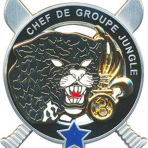 BREVET COMMANDO 3ème REI LEGION ETRANGER CHED DE GROUPE JUNGLE CEFE ETOILE BLEUE
