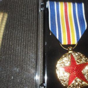 Médaille Ordonnance Blessé / Médailles des Blessés de Guerre