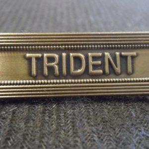 Agrafe TRIDENT sur la médaille de la protection militaire du territoire MPMT